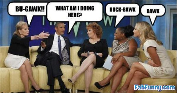 funny-celebrity-pictures-bawk-bawk