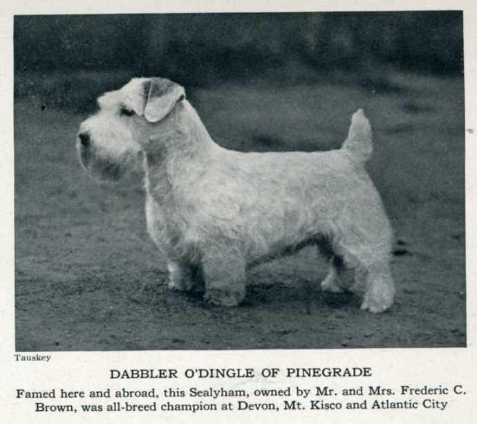 Sep 1932, Spur magazine