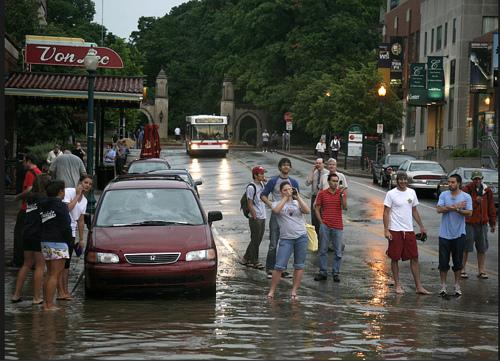 http://www.megcabot.com/2008/06/water-blog/