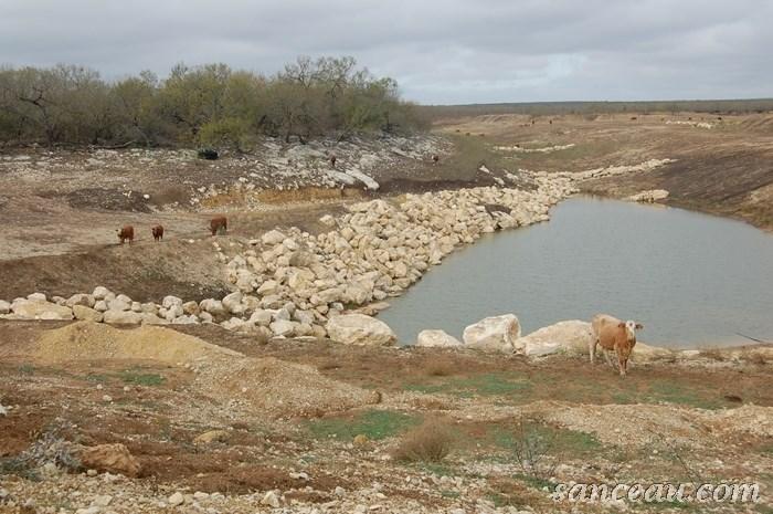 Ranch Jan 2013 006